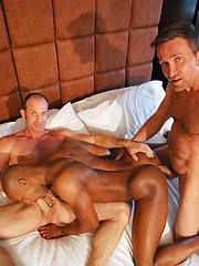 Jack servicing Matts huge cock while Bill is munching and eating away on his firm black ass