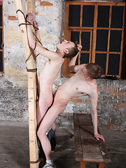 Ashton Bradley gets his whip out for a good flogging