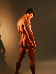 Tanned and muscled man body