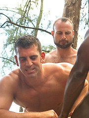 Triumphant gay interracial three-way