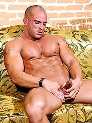 Real big bodybuilder Troy Hammer
