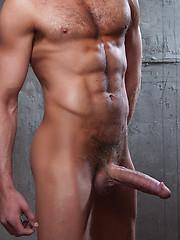 Gay porn actor Vito Gallo bangs Dylan Hausers ass