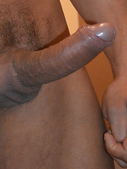 Francesco DMacho is moving into a brand new apartment and hires Nicolas Taximan as his mover. ...