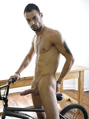 Bicycle Seat Envy